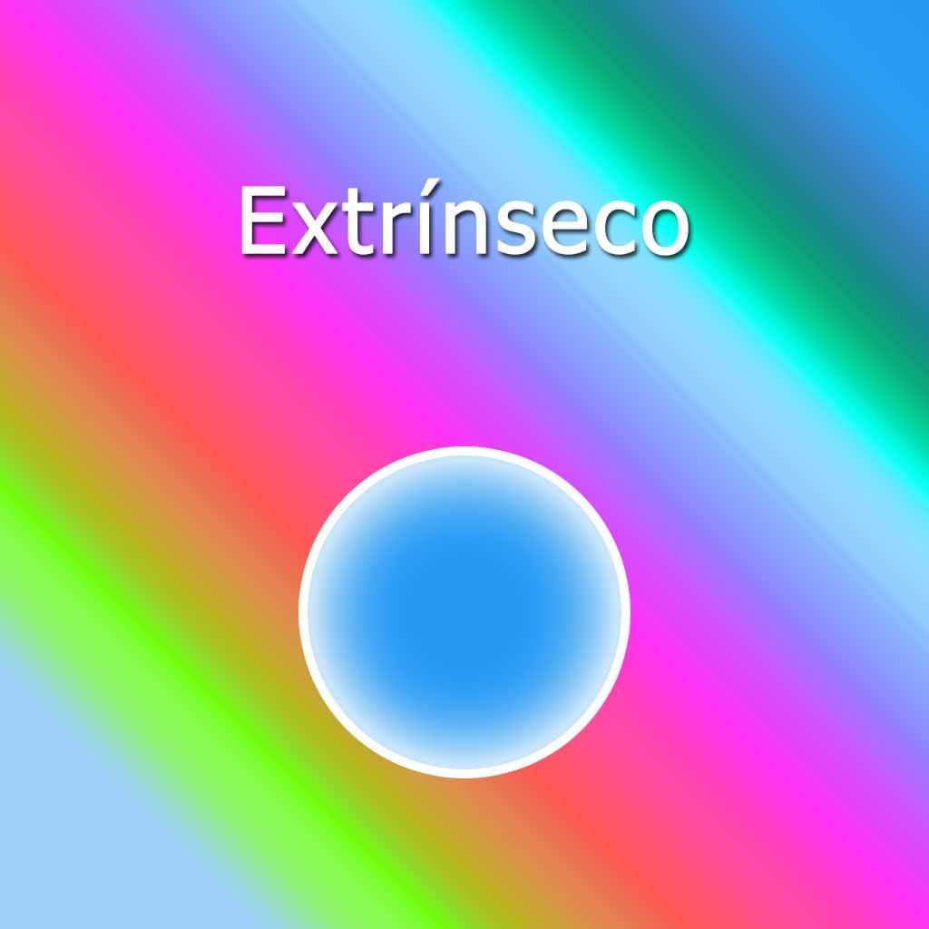 palabra extrínseco