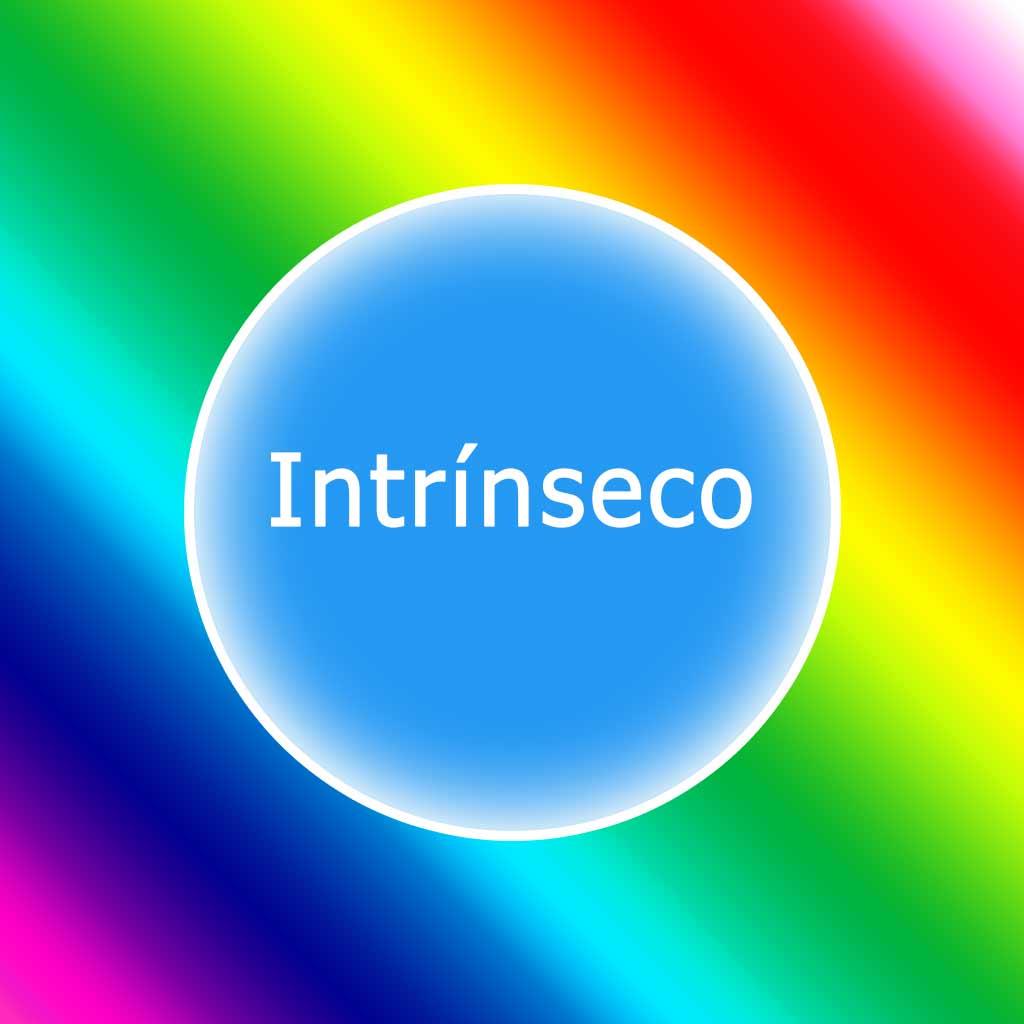 la palabra intrínseco